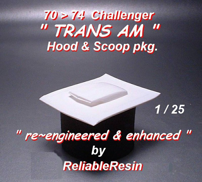 "1970/74 Challenger ""Trans Am"" Hood & Scoop pkg!"